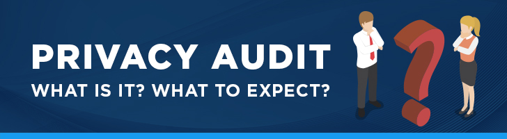 What is a privacy audit?