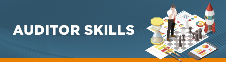 Auditor skills