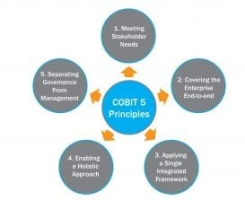 cobit_5_principles-02