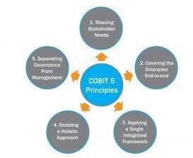 cobit_5_principles-02