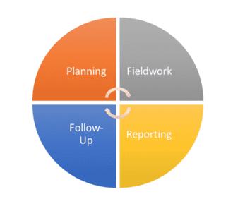 Internal audit process