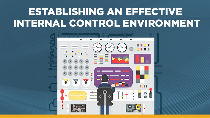 Establishing an internal control environment