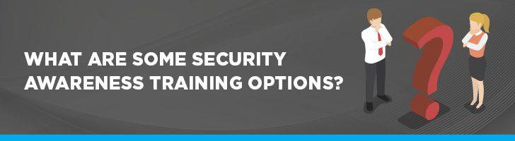 Security awareness training options