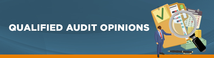 Qualified Audit Opinions