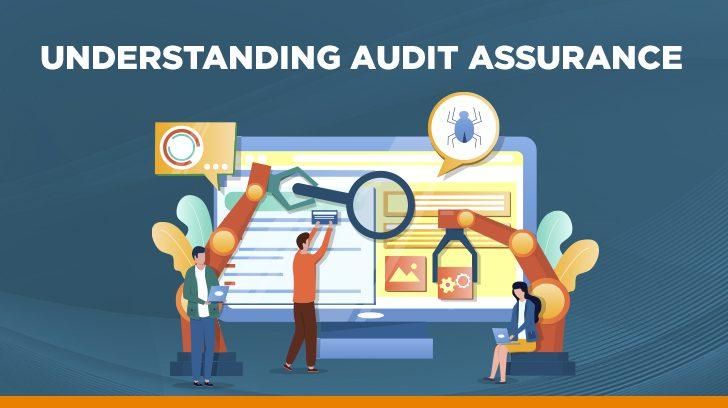 Understanding audit assurance