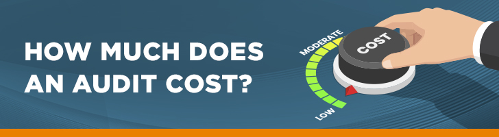 What does an audit cost?