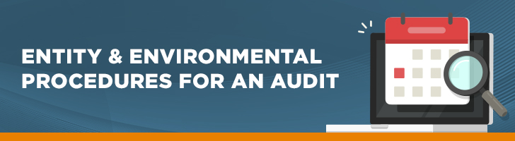 Entity and environmental procedures for an audit